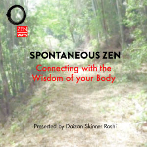 Spontaneous Zen downloadable video