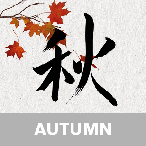 Zen yoga for autumn video download