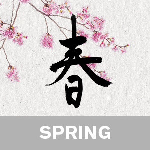 Zen yoga for spring video download